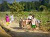 India: opäť teror voči kresťanom