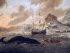 Moby Dick – symbol Božieho trestu alebo večného nepriateľstva človeka aprírody? Melvillov román  obielej veľrybe a ootázke, kto je tu vlastne pánom
